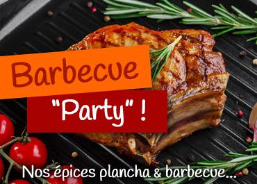 Sélection d'épices Barbecue et Plancha