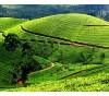Les paysages du Kérala en Inde