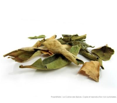 Feuilles de Combawa (ou Kaffir lime)