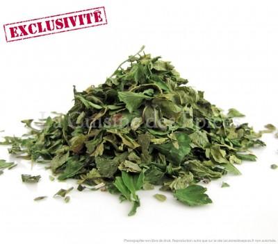 Mélange Plantes sauvages